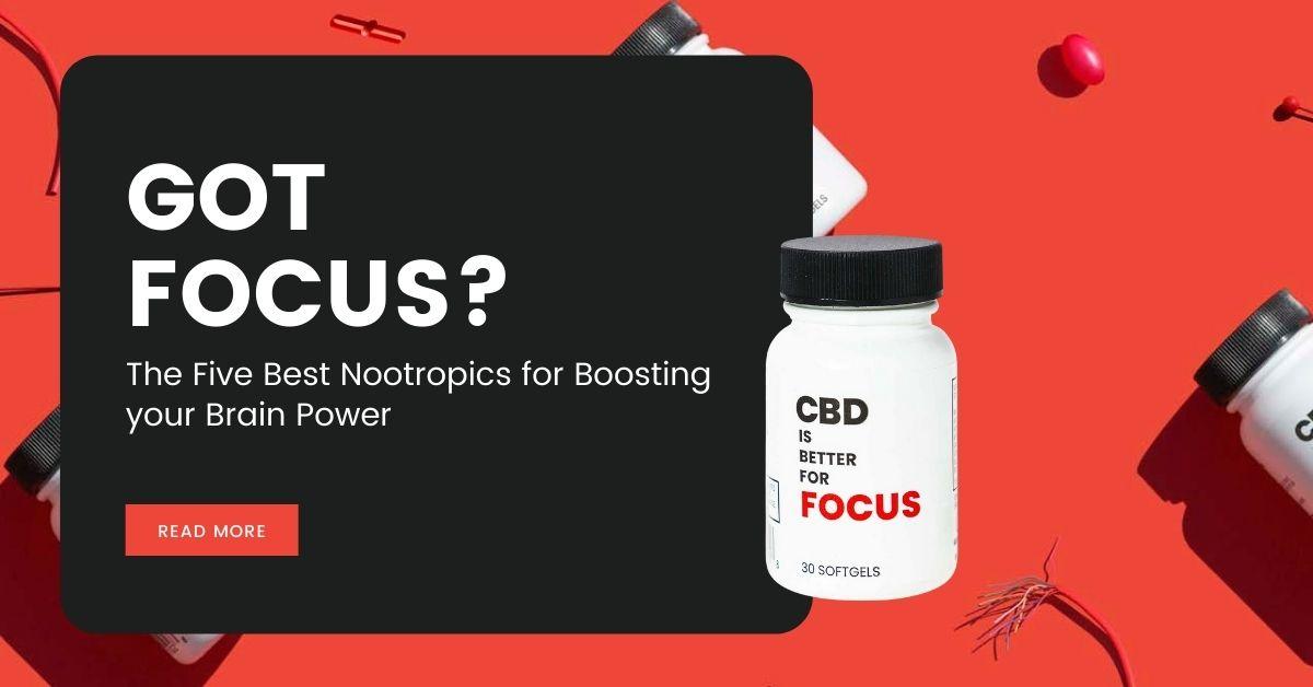 Got Focus The Five Best Nootropics for Boosting your Brain Power
